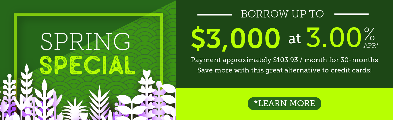 Spring personal loan special. Borrow up to $3,000 for 3.00% APR for 30 months.