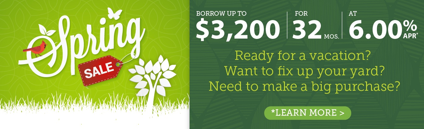 Spring Sale - Borrow $3200 for 32 months at 6% APR
